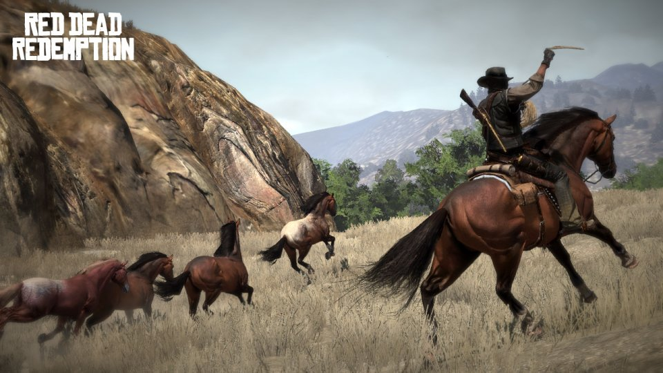 rdr-screen-1