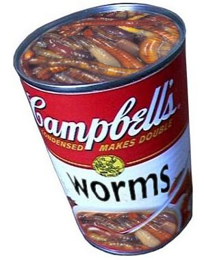 can-of-worms-79112000763