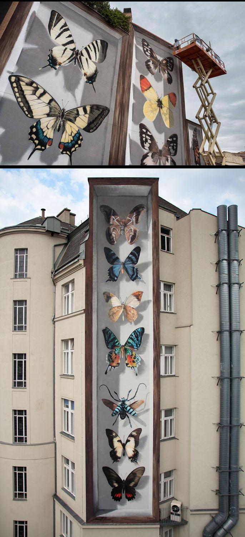 butterfly-5-copy