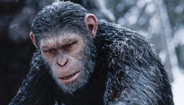 War-for-the-Planet-of-the-Apes-post1-620x352
